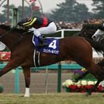 2014年有馬記念重賞レース回顧