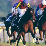 2014年有馬記念の予想に 残り6頭の出走各馬解説
