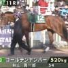 パドックの見方:京都牝馬Sで15番人気のゴールデンナンバーが買えた理由