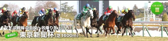2015年東京新聞杯