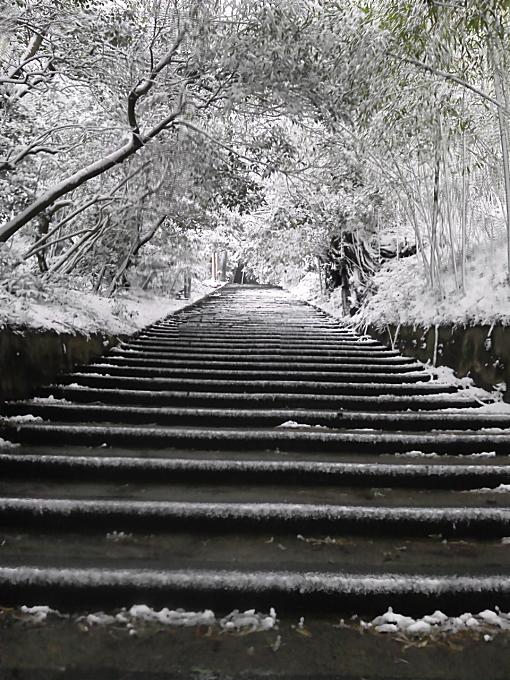 長浜神社4