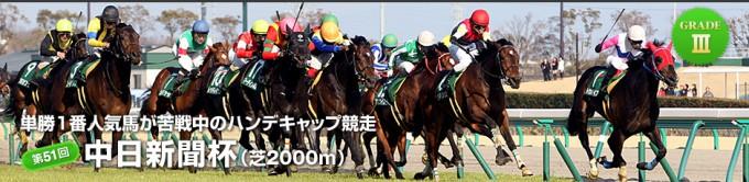 2015年中日新聞杯