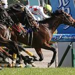 NHKマイルC2015予想に 最新番付と、全ステップレースまとめ(枠順確定)