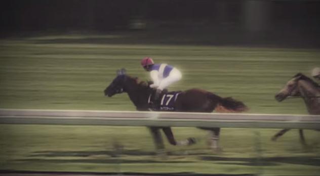 夢の第11レース-24