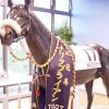 今は無きナリタブライアン記念館へ向かったあの日・・・やっぱりナリタブライアンは名馬!