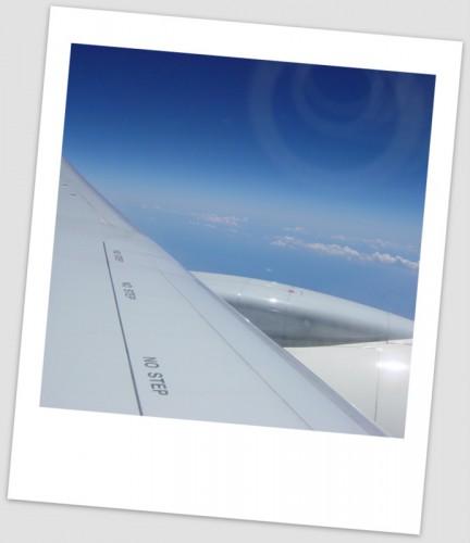 竹富島へ向かう飛行機の翼