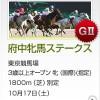 府中牝馬S2015のレース回顧と次走以降の注目馬と、馬場と枠次第ではエリザベス女王杯で本命もある馬など