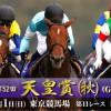 天皇賞(秋)2015予想に ラブリーデイ,エイシンヒカリ,イスラボニータの近走評価と、各馬の特徴