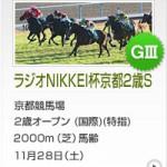 京都2歳S2015のレース回顧と次走以降の注目馬と、このレースで最も強い競馬した世代屈指の好馬体の持ち主など