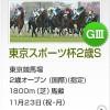 【予想追記】東京スポーツ杯2歳S2015予想:出走馬の前走チェックコメントと「勝ちポジ」予想