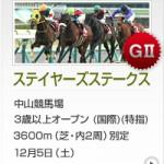 【予想追記】ステイヤーズS2015予想:出走馬の前走チェックコメントと「勝ちポジ」予想