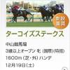 【このレースは見(ケン)します】ターコイズS2015予想:出走馬の前走チェックコメントと「勝ちポジ」予想