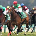 京成杯2016のレース回顧と次走以降の注目馬と、次走で人気を落とすようなら逆に狙いたい馬(2頭)と、メートルダールについて