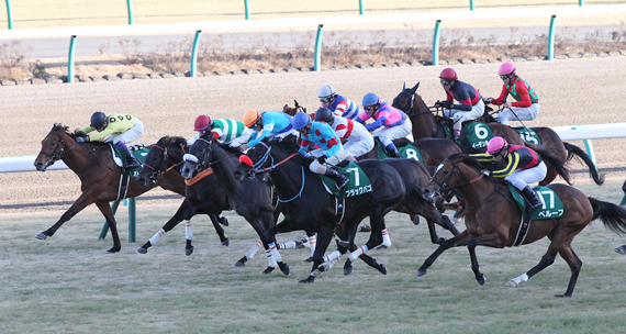 2016年京成杯