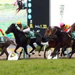 シンザン記念2016のレース回顧と次走以降の注目馬と、ジュエラーが危険な人気馬になるパターン