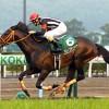 【予想追記】小倉大賞典2016予想:出走馬の前走チェックコメントと「勝ちポジ」予想