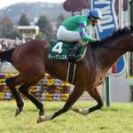 共同通信杯2016のレース回顧と次走以降の注目馬と、気性と馬体から最も伸びシロがありそうな馬