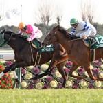 【予想追記】京都牝馬S2016予想:出走馬の前走チェックコメントと「勝ちポジ」予想