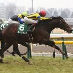 【予想追記】東京新聞杯2016予想:出走馬の前走チェックコメントと「勝ちポジ」予想