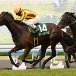 京都牝馬S2016のレース回顧と、かなりの性能を秘めた次走以降も楽しみな馬