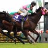 【予想追記】高松宮記念2016予想:出走馬の前走チェックコメントと「勝ちポジ」予想