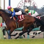 弥生賞2016のレース回顧と次走以降の注目馬と、マカヒキとリオンディーズはどっちが皐月賞向き?
