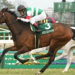 【予想追記】中山牝馬S2016予想:出走馬の前走チェックコメントと「勝ちポジ」予想