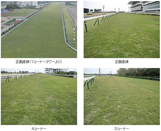 2016年1回新潟芝コース