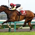 【予想追記】大阪杯2016予想:出走馬の前走チェックコメントと「勝ちポジ」予想