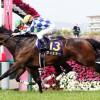 桜花賞2016のレース回顧と次走以降の注目馬と、次走以降で人気を落とすようなら大穴で狙ってみたい馬と、穴馬券術
