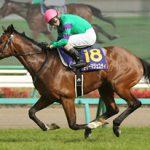 皐月賞2016のレース回顧と次走以降の注目馬と、2016年日本ダービーを制する馬は?