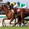 阪神牝馬S2016予想に:出走馬の前走チェックコメント(「勝ちポジ」予想は未定)