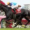 大阪杯2016のレース回顧と、ホントにホントに強くなった馬と、安田記念に出走するなら狙ってみたい馬