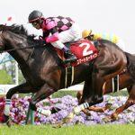京都新聞杯2016のレース回顧と、スマートオーディンはダービーで通用するか?