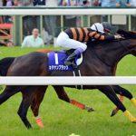 天皇賞(春)2016のレース回顧と、宝塚記念の本命◎候補の馬と、出走するレースは全部買いたい馬など