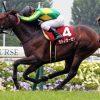 【予想追記】京都新聞杯2016予想:出走馬の前走チェックコメントと「勝ちポジ」予想