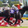 安田記念2016のレース回顧と、次走で好走可能条件にも関わらず不当に人気を下げるようなら積極的に狙いたい馬