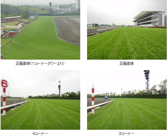 2016年3回中京芝コース