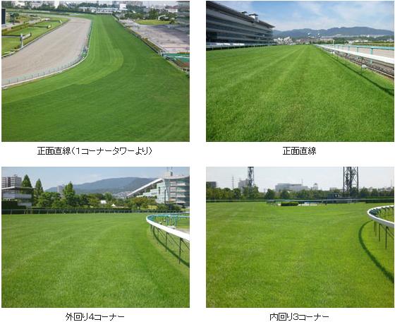 2016年4回阪神芝コース