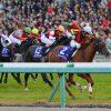 【枠順確定】阪神ジュベナイルフィリーズ2016予想に 2歳牝馬番付と、全ステップレースまとめなど
