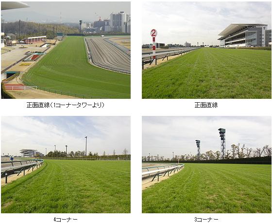 2017年2回中京芝コース