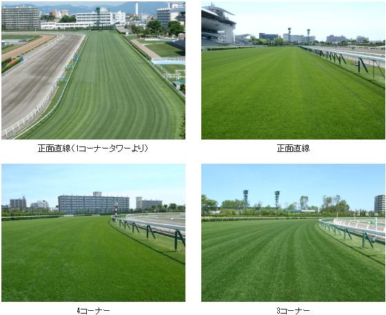 2017年1回函館芝コース