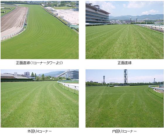 2017年3回阪神芝コース