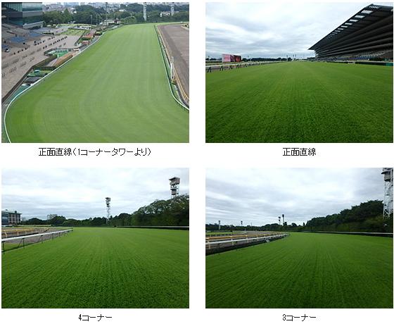 2017年4回東京芝コース