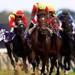 天皇賞(秋)が内有利?えっ!雨でも?と、先週の馬場傾向(10月21,22日)と、今週の馬場予想(10月28,29日)