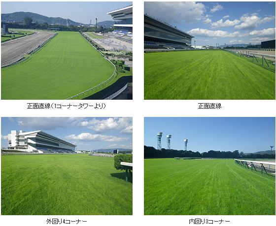 2017年4回京都芝コース